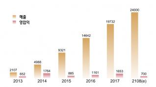 5년 만에 연매출 2000억원에서 2조원!..카카오의 확장비결은?