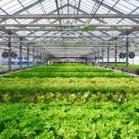 스타트업 생태계, 업종별 분위기 한눈에 살펴보기 (2018년 하반기)